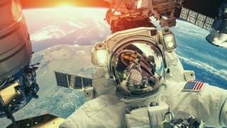 La NASA y universos paralelos en el Día Mundial de las Abejas