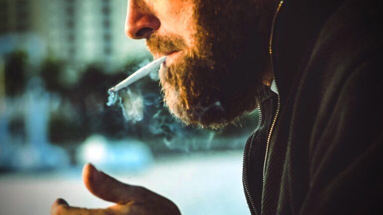 Legalización de la mariguana: Desde la sociedad civil hasta la Corte