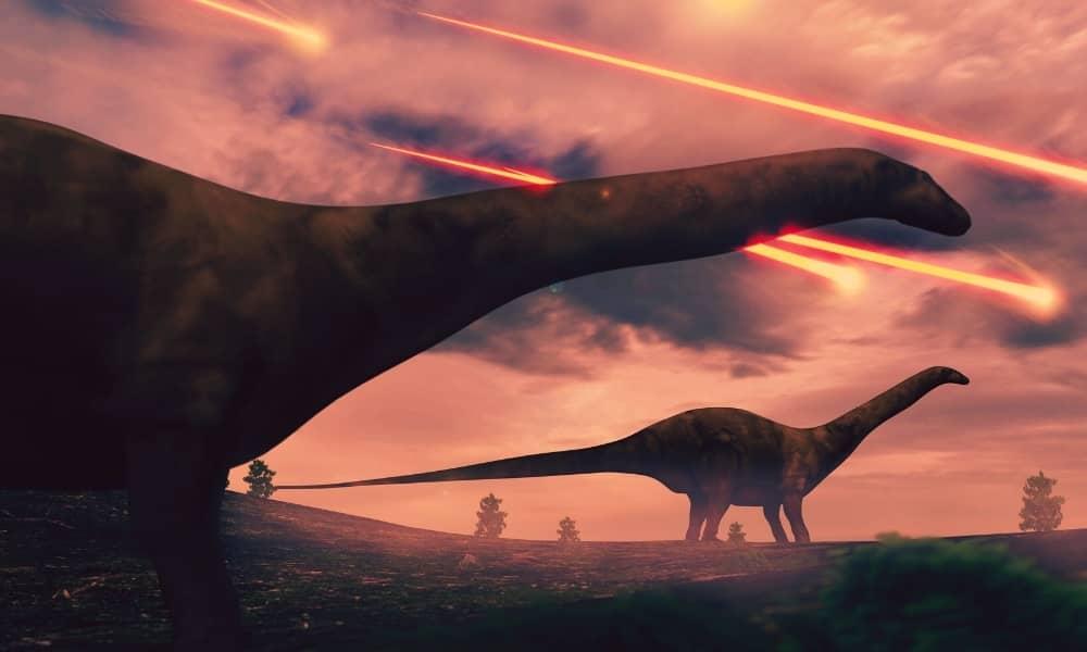 La sexta extinción recaerá en nosotros.