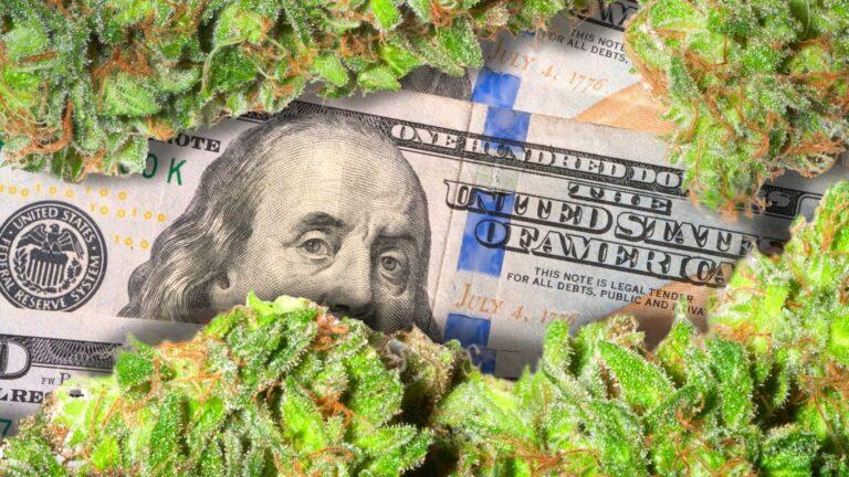 La marihuana es negocio: Nuevo México invertirá 300 MDD para producir