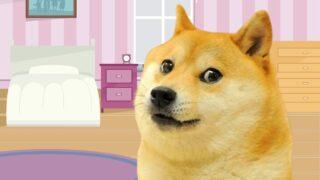 Doge, el shiba inu más famoso, es subastado en NFT por 4 MDD