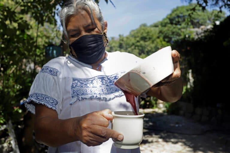 Cocinera otomí gana concurso con su atole de maíz morado