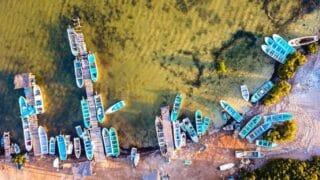 México incumple obligaciones del T-MEC en sector pesquero.