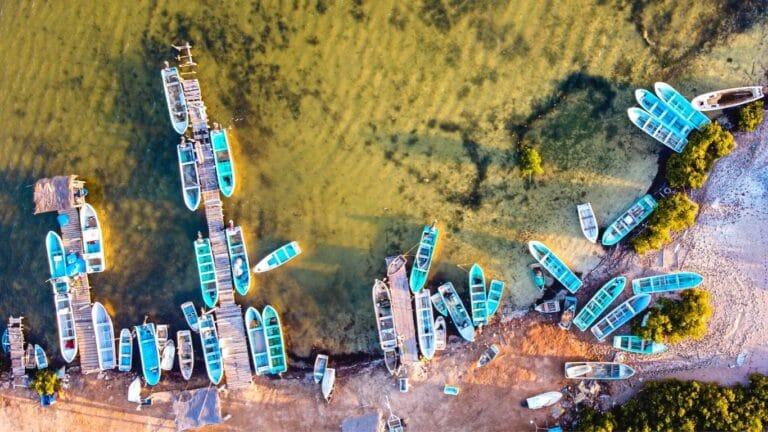 México incumple obligaciones del T-MEC en sector pesquero